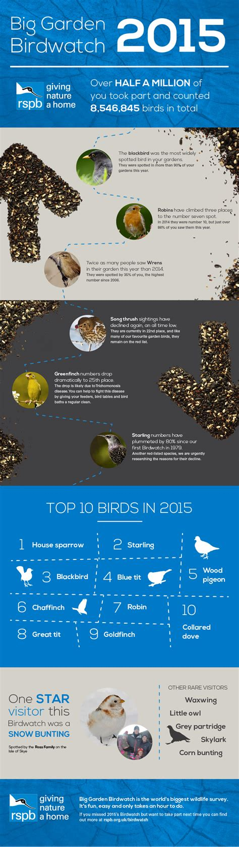 Rspb Great Garden Birdwatch Results Are In by The Rspb Big Garden Birdwatch Results 2015