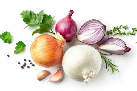cuisiner les oignons tout sur l oignon le choisir le cuisiner le conserver