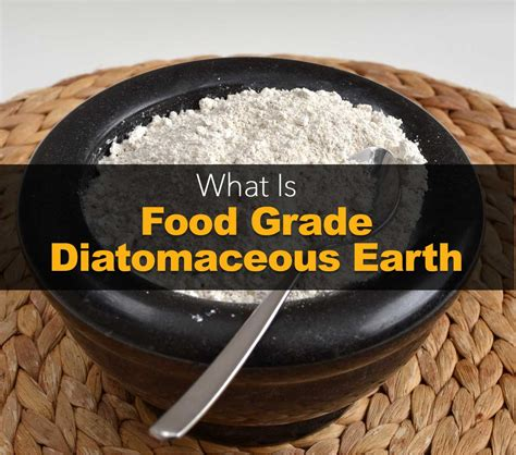 Does Diatomaceous Earth Kill Bed Bugs by Diatomaceous Earth Bed Bugs How Does It Take To Kill