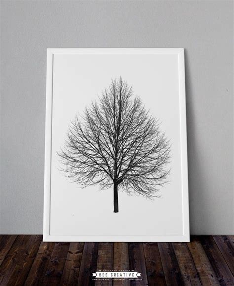 free printable tree wall art 17 b 228 sta bilder om herbarium the tree p 229 pinterest tr 228 d