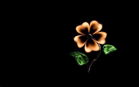 creative flower match fire minimalism black background hd