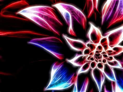 cool flower backgrounds 187 cool flower wallpapers