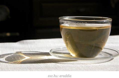 Teh Hijau Slimming Tea sekretaris ku 5 makanan pembantu diet sekretaris ku