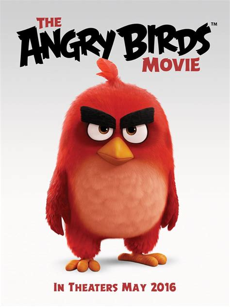 angry birds 2016 imdb the angry birds movie 2016 english movie in abu dhabi