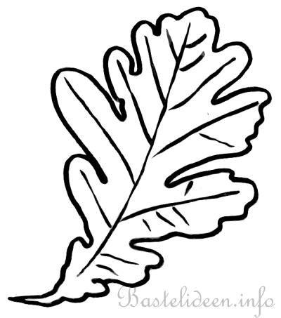 bastelvorlage ausmalbild oder malvorlage eichenblatt
