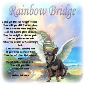Pin rainbow bridge poem on pinterest