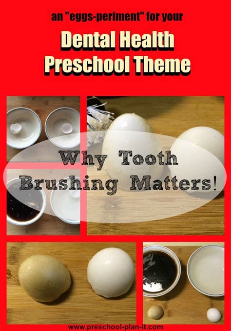 why use themes in kindergarten dental health preschool theme this experiment will show