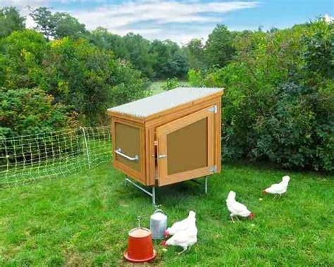 backyard chicken blogs solar backyard chicken coop building plans diy mother