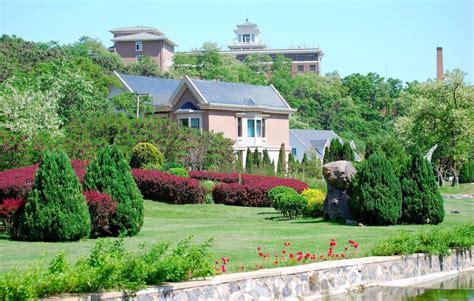 imagenes de casas con jardines grandes banco de im 193 genes residencia con jardines y flores