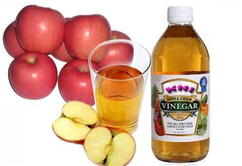 Biofitto Cuka Apel manfaat cuka apel kerajinan home industry