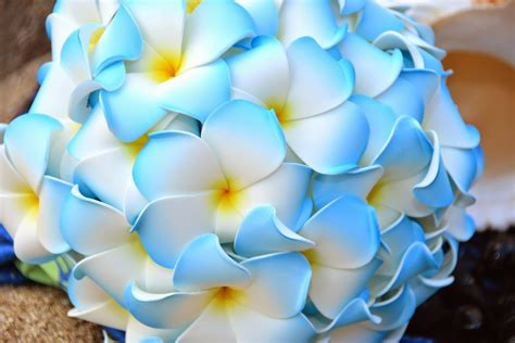 Blue Wedding Flower Pictures by Image Gallery Hawaiian Flowers Blue Bouquets