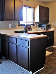tips for painting kitchen cabinets black glass cabinet doors front