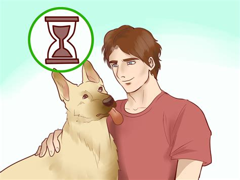 how to a herding how to adopt a herding 12 steps with pictures wikihow