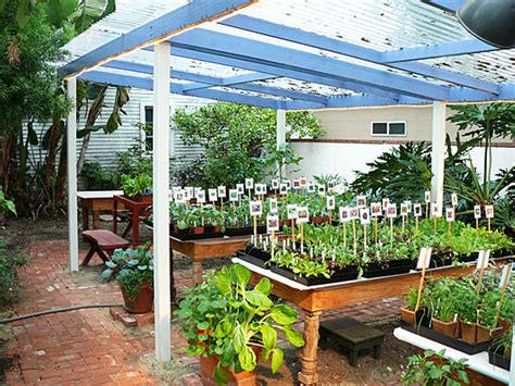 Backyard Nursery by Mahasico Business Ideas Tips And Trends