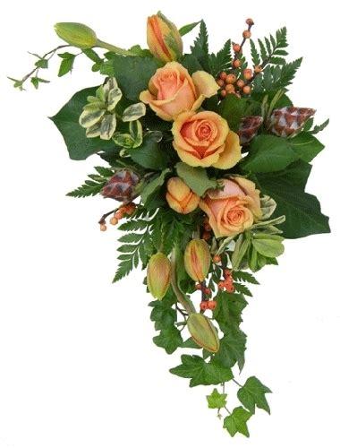 significato dei fiori amicizia fiori amicizia 6 significato dei fiori fiori amicizia 6