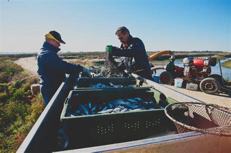marco graf pepe semana del pescado de estero de chiclana