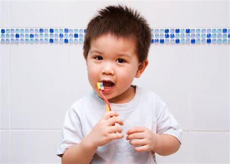 Hairbrush For Boy 4yr Old | do toddlers need to go to the dentist and brush their