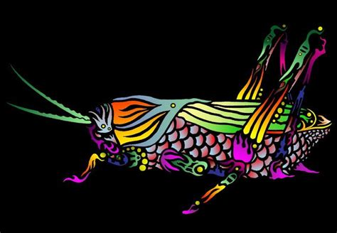 tribal grasshopper to go with tribal tattoo theme google