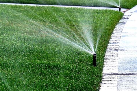 lawn care tip overwatering turn off your sprinklers