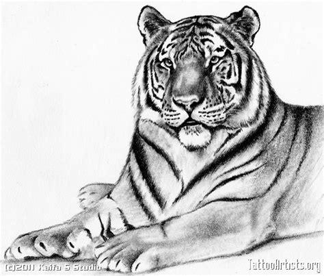 galera de fotos e imgenes tattoo tigres
