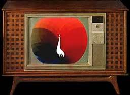 color tv show 1962 why there was no nbc records a m corner forums