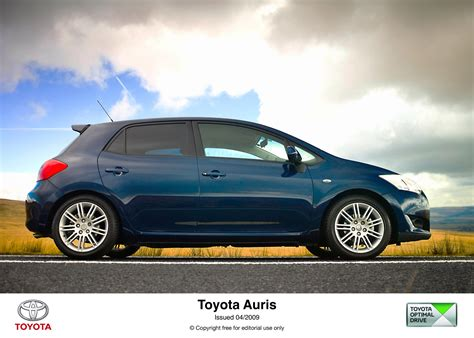 toyota auris  cat pictures photo