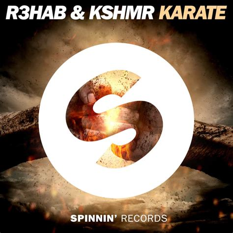 Or R3hab Lyrics R3hab Karate Lyrics Genius Lyrics