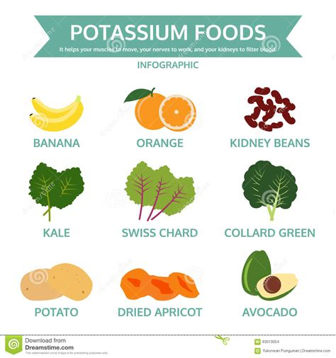 fruits w potassium potassium foods food info graphic vector stock vector
