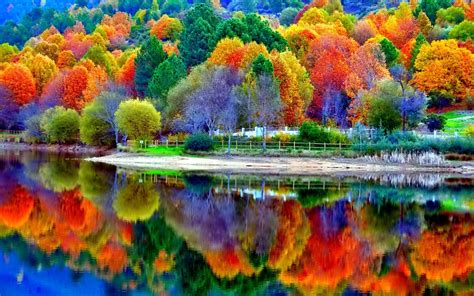 most beautiful colors autumn leaves and colorful tree reflections in the water