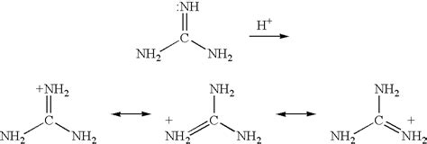 What Does Protonated Patent Us20030211389 Guanidine Derivatives As Cations