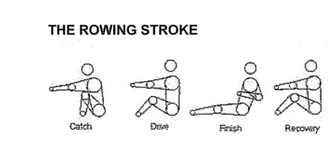 rowing machine diagram frequently asked questions about crrc and the sport of rowing