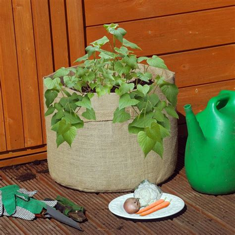 100 Ideas To Try About Grow Bags Garden Composters Bag Gardening Vegetables