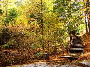 Fall Landscaping Fall Landscape Photography Viewing Gallery