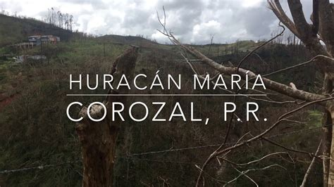municipio de corozal in corozal municipio pr corozal hurac 225 n mar 237 a youtube