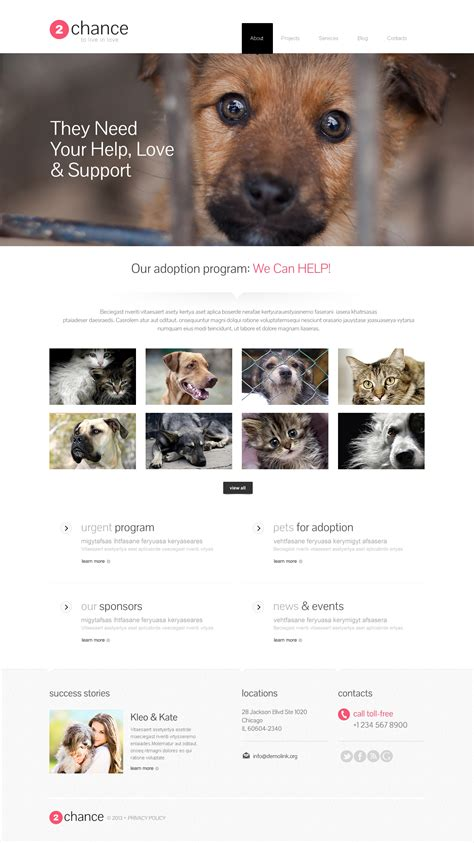 Impressive Animal Shelter Wordpress Theme 46165 Rescue Website Template