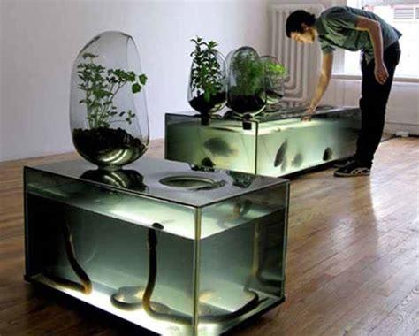 vaso idroponico realizzare una coltivazione idroponica fare giardinaggio