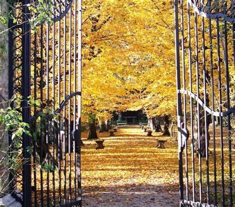 grandi giardini il fascino fall foliage nei grandi giardini italiani