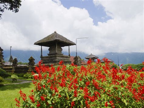 bali tourism board your bali travel guide bali tourism board the best places in bali to go on a retreat