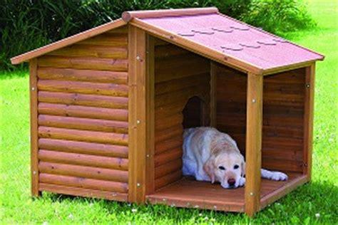 dog house la niche pour chien choisir la bonne niche lebernard