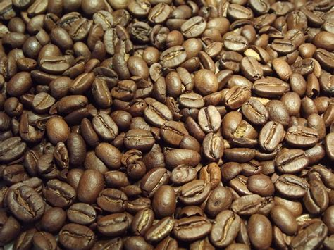 Coffee Beans coffee beans free stock photo domain pictures