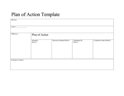 plan of action template tristarhomecareinc
