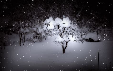 gif wallpaper winter winter gif find share on giphy