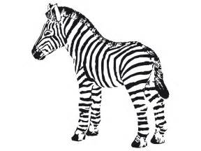 zebra color 3d coloring pages zebra coloring pages