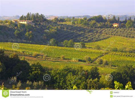 bloem boederij klassieke toscaanse boerderij stock foto afbeelding