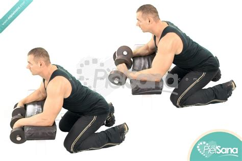 reverse barbell wrist curl over bench ejercicios para antebrazos