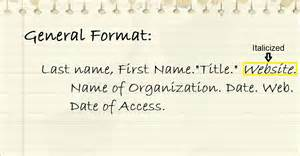 mla format website citation mla apa format mla apa format