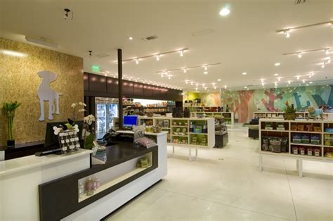 puppy store santa ca store interior design healthy spot santa industrial pets and