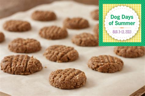 almond butter for dogs days of summer hop almond butter biscuits migraine relief recipes