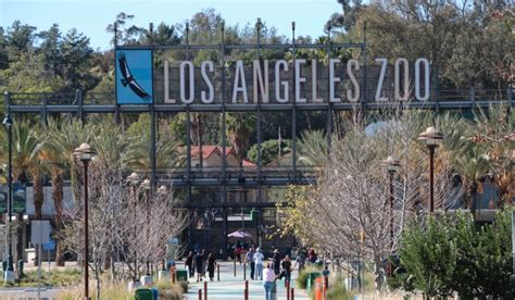 Los Angeles Zoo And Botanical Gardens Los Angeles Ca 16 Gorgeous Los Angeles Botanical Gardens You Definitely Need To Visit Once