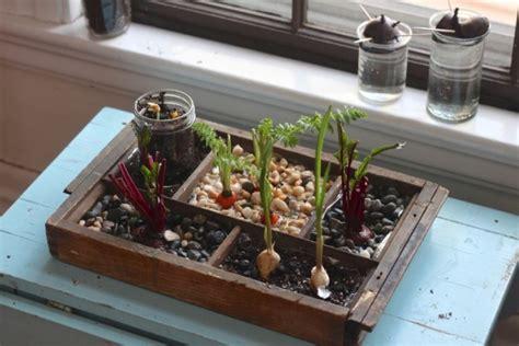 indoor kitchen garden ideas 18 indoor garden ideas to green your apartment brit co